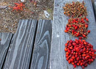 Low Bush Cranberry Rosehip Conserve