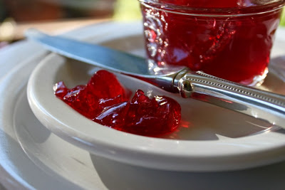 Pomegranate Champagne Jelly || Hitchhiking to Heaven