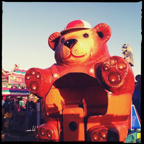 fair_bear