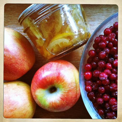 lowbush_cranberry_marmalade_relish_ingredients