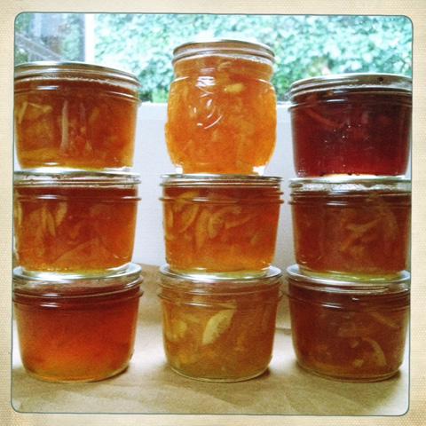 many_marmalades