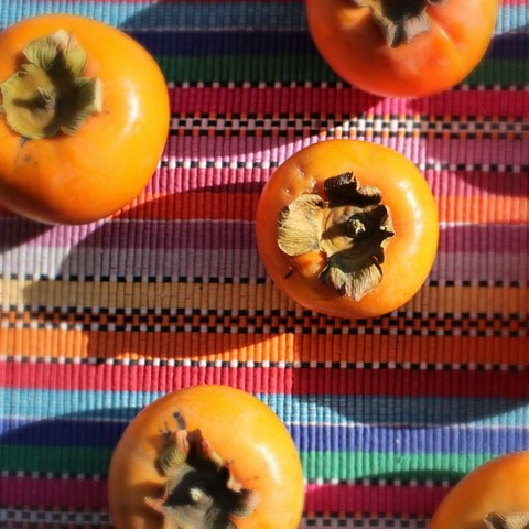 five_fuyu_persimmons