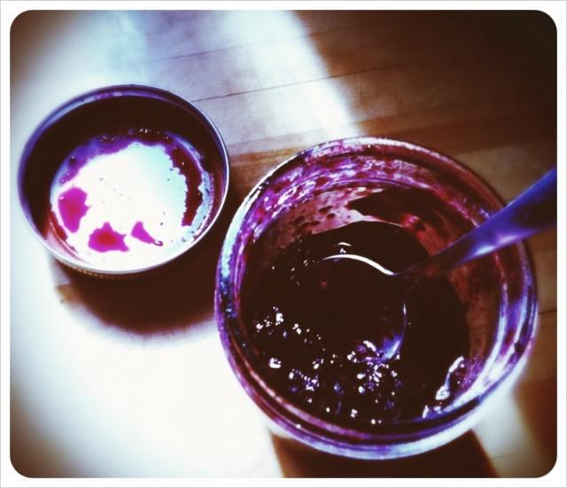 wild_alaskan_blueberry_jam