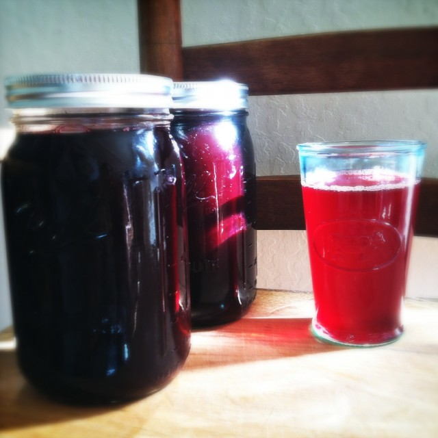 Blackberry-Rhubarb Juice
