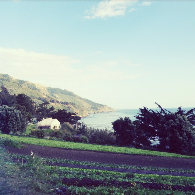 The Esalen Institute | Hitchhiking to Heaven