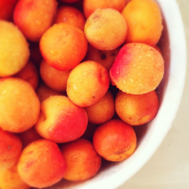 Fruit for Low Sugar Apricot Jam | Hitchhiking to Heaven
