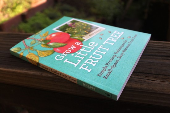 Grow a Little Fruit Tree, by Ann Ralph | Hitchhiking to Heaven