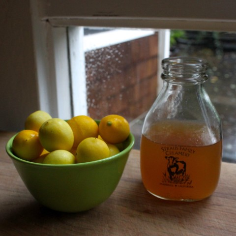 Limequat Honey Syrup