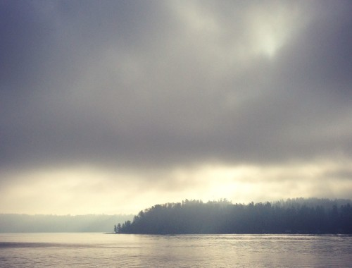 Vashon Island In The Fog || Hitchhiking to Heaven