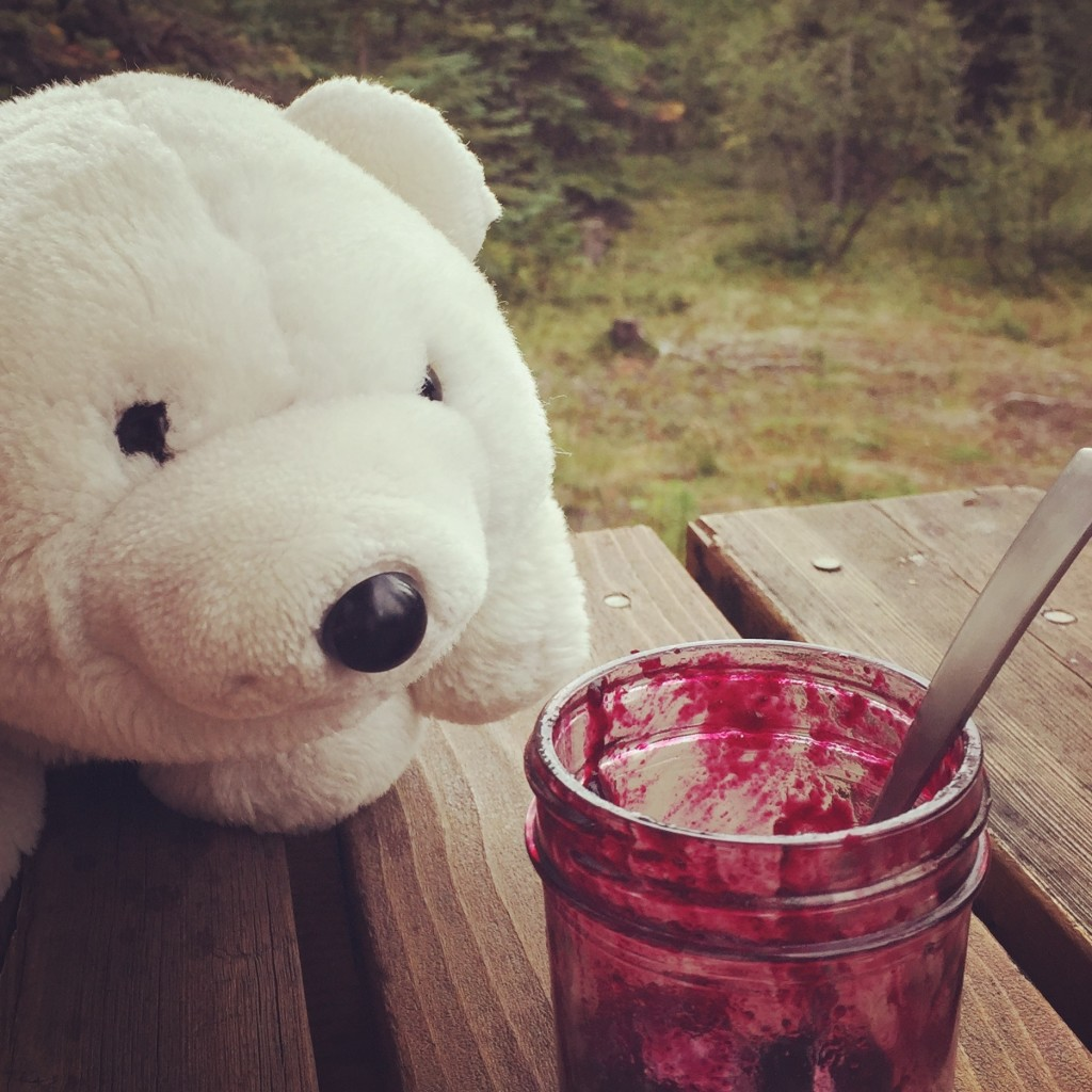 Because all bears like berry jam