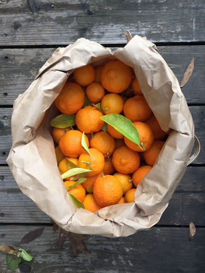 Photo of a bag of Rangpur Limes for making Rangpur Lime Marmalade