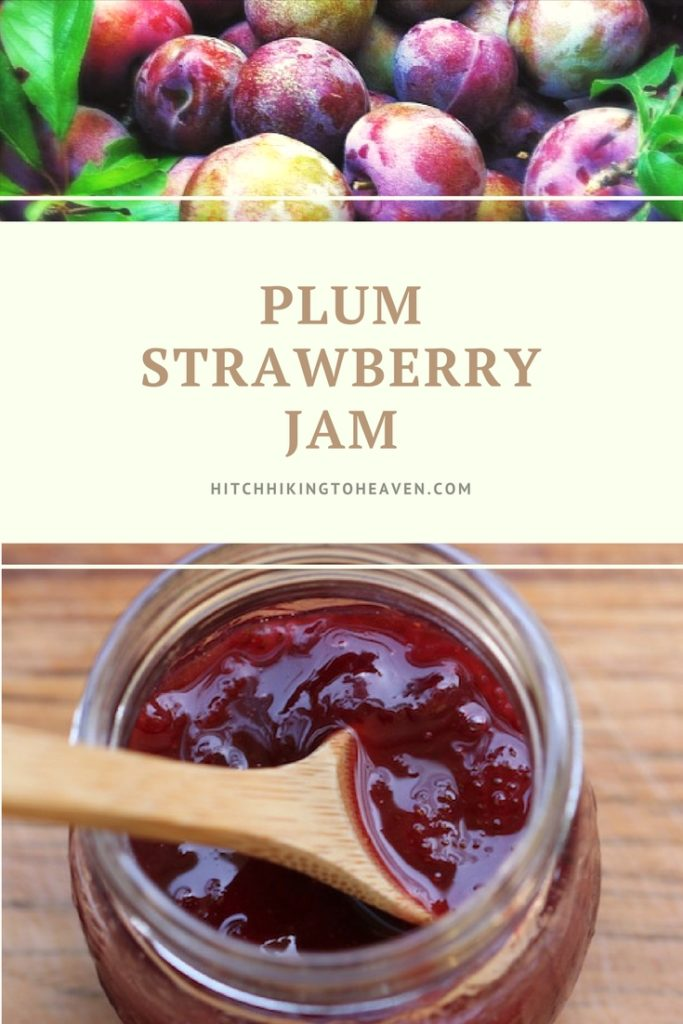 Plum Strawberry Jam   Hitchhiking to Heaven