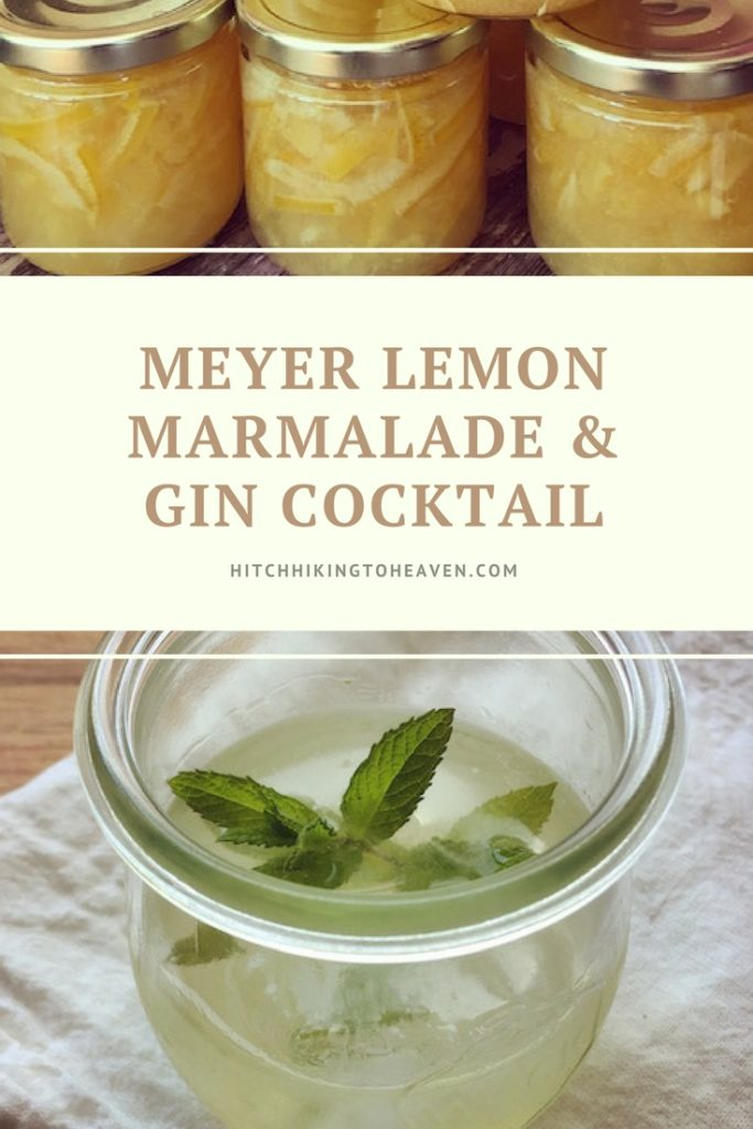 Gin & Meyer Lemon Marmalade Cocktail | Hitchhiking to Heaven